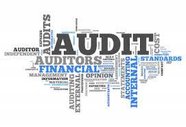 auditing intern