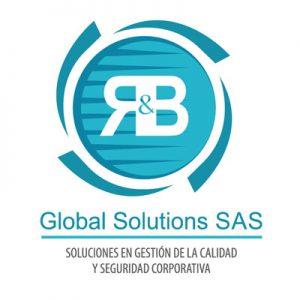 logo nl RB Global Solutions